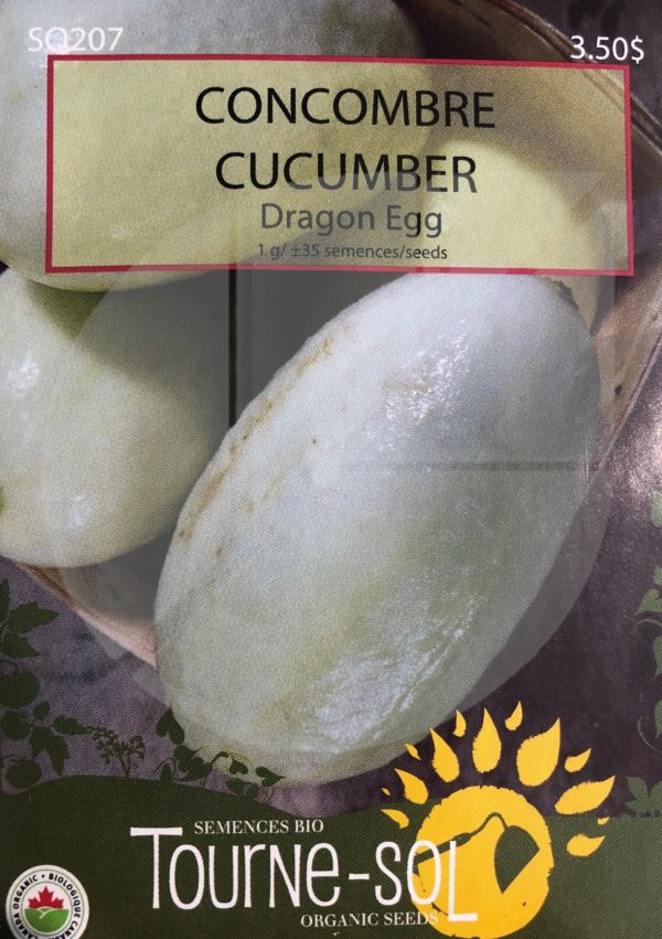 Concombre 'Dragon Egg' / 'Dragon Egg' Cucumber - Pépinière