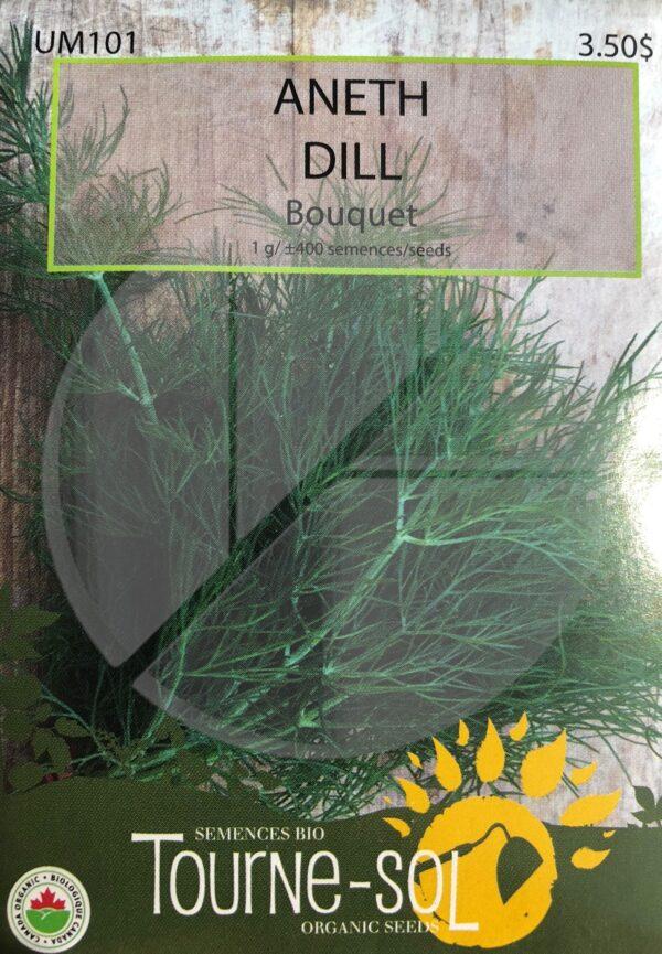 Aneth Bouquet Bio / Dill Bio  - Pépinière