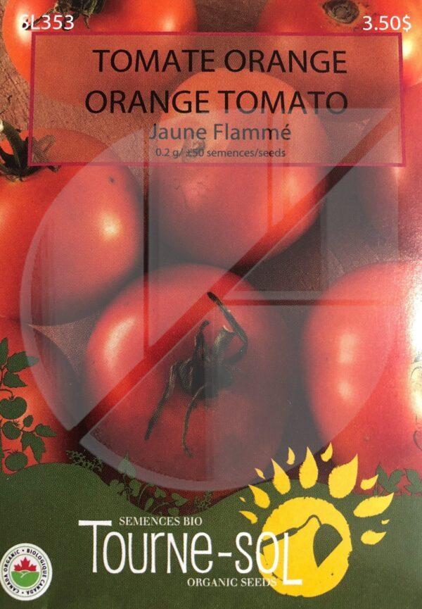 Tomate Orange 'Jaune Flammée' / 'Jaune Flammée' Orange Tomato - Pépinière