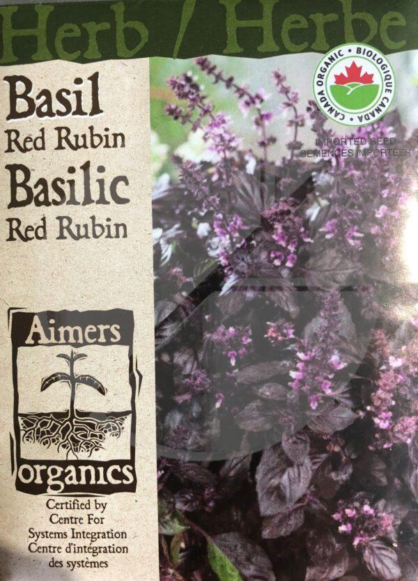 Basilic 'Red Rubin' / 'Red Rubin' Basil  - Pépinière