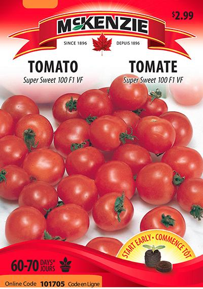 Tomate 'Super Sweet 100' F1 VF / 'Super Sweet 100' Tomato F1 VF - Pépinière