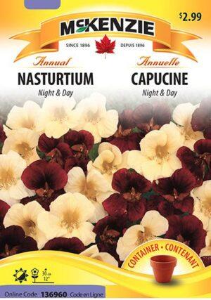 Capucine 'Night & Day' / 'Night & Day' Nasturtium - Pépinière