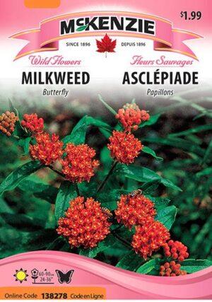 Asclépiade Papillons / Butterfly Milkweed - Pépinière
