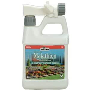 Insecticide-miticide au malathion à vaporisation au boyau - Pépinière