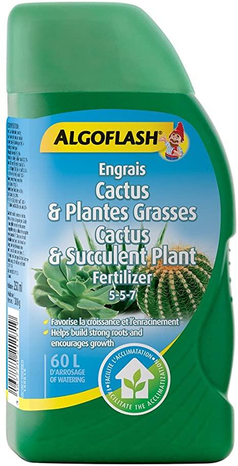 ALGOFLASH Cactus 5-5-7 250ml - Pépinière