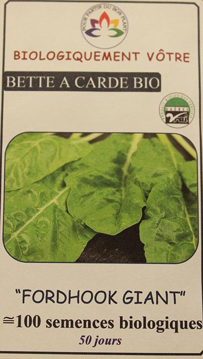 Bette à Carde Verte 'Fordhock' Bio / 'Fordhock' Swiss Chard Bio - Pépinière