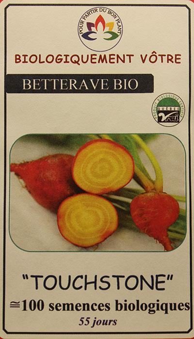Betterave 'Touchstone' Bio / 'Touchstone' Beet Bio  - Pépinière