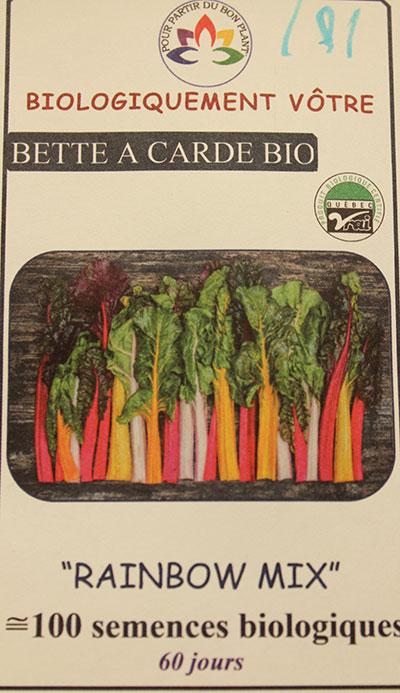 Carotte Rainbow Mix Bio / Rainbow Carrot Mix Bio  - Pépinière