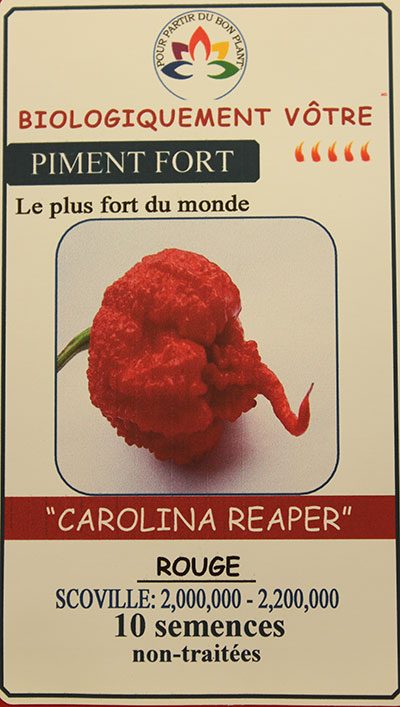 Piment Rouge 'Carolina Reaper' Non Traité / 'Carolina Reaper' Red Pepper - Pépinière