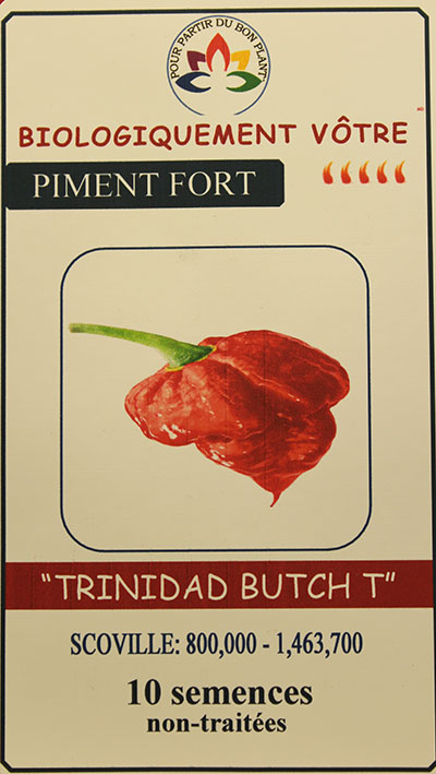 Piment 'Trinidad Butch T' Non Traité / 'Trinidad Butch T' Pepper Untreated  - Pépinière