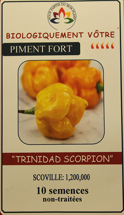 Piment Jaune 'Trinidad Scorpion' Non Traité / 'Trinidad Scorpion' Yellow Pepper Untreated  - Pépinière