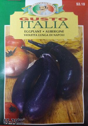 Aubergine Longue Violette de Napoli Gusto Italia / Napoli Long Violet Eggplant Gusto Italia - Pépinière