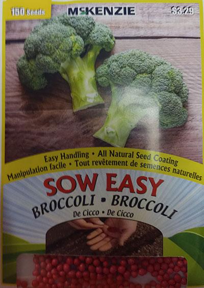 Brocoli de Cicco Sow Easy  / Cicco Broccoli Sow Easy - Pépinière