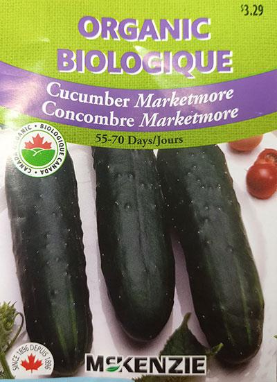Concombre 'Marketmore' Biologique / 'Marketmore' Cucumber Organic  - Pépinière