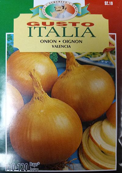 Oignon 'Valencia' Gusto Italia / 'Valencia' Onion Gusto Italia - Pépinière