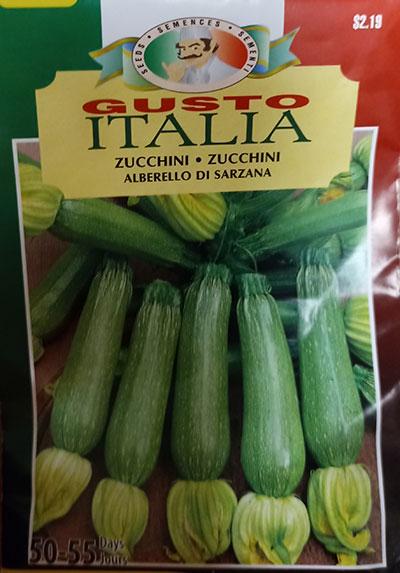 Zucchini 'Alberello di Sarzana' Gusto Italia / 'Alberello di Sarzana' Zucchini Gusto Italia - Pépinière