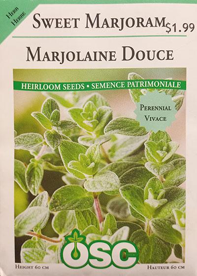 Marjolaine Douce / Sweet Marjolaine - Pépinière