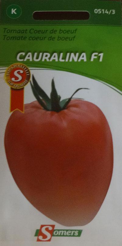 Tomate Coeur de Boeuf 'Cauralina' F1 / 'Cauralina' Oxheart Tomato F1  - Pépinière