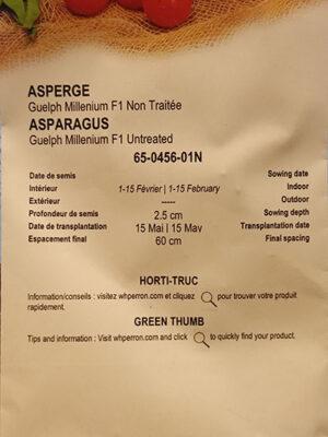 Asperge Hybride 'Guelph Millenium' Non Traité / 'Guelph Millenium' Hybrid Asparagus Untreated - Pépinière