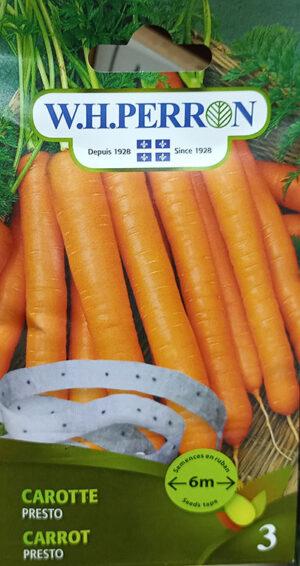 Carotte 'Presto' sur Ruban / 'Presto' Carrot on Tape - Pépinière